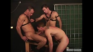 Bobtail fuck close by rough anal scenes during their gay BDSM